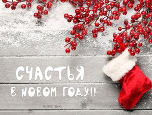 Уважаемые коллеги! Сердечно поздравляем Вас с наступающим Новым годом и Рождеством!